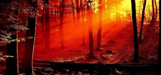 Vivaldi Four Seasons Autumn 3 Allegro