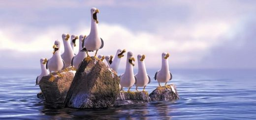 Seagulls From Finding Nemo | www.RedRingtones.com