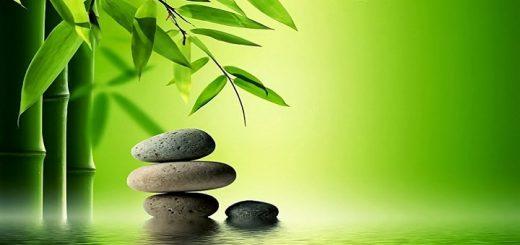 Zen Garden Ringtone | www.RedRingtones.com