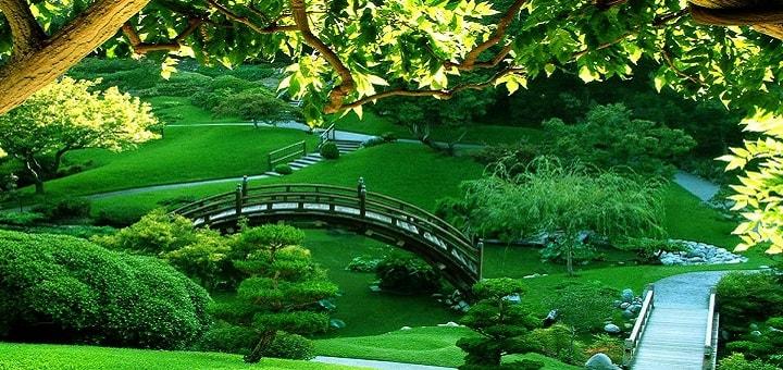 Zen Music | www.RedRingtones.com