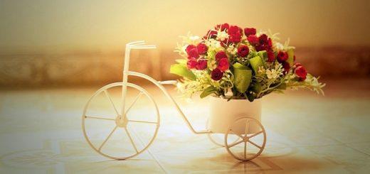 Romantic Ringtone | www.RedRingtones.com
