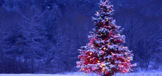 Christmas Alarm Tone | www.RedRingtones.com