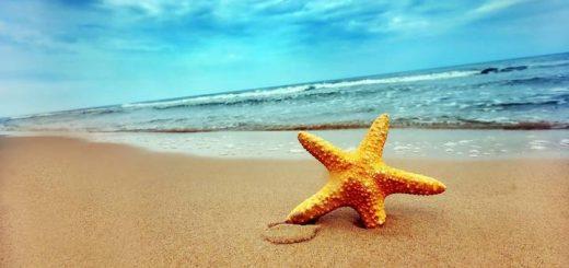 Relaxing Sea Waves Music Ringtone | www.RedRingtones.com