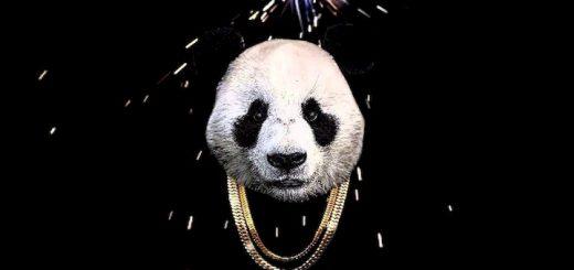 panda ringtone