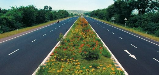 Highway Wildflowers Ringtone