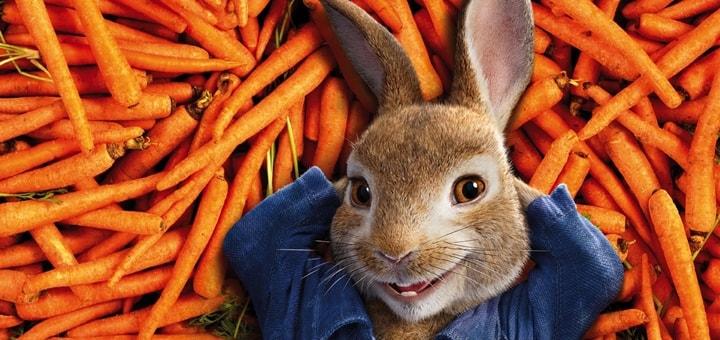 Peter Rabbit Ringtone