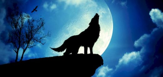 wolf howling ringtone