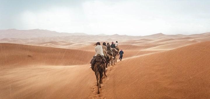Sahara Rains Ringtone