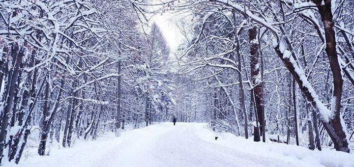 Winter Music 2 Ringtone