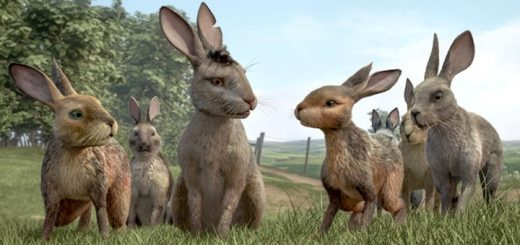 Watership Down Ringtone
