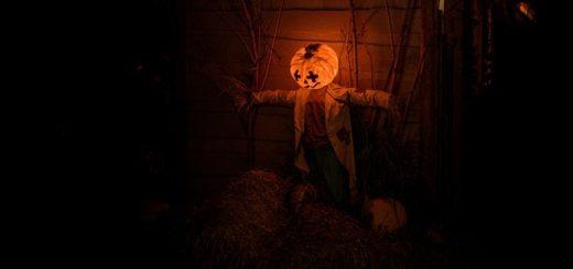Haunted House Ringtone