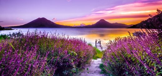 Landscape Ringtone Download