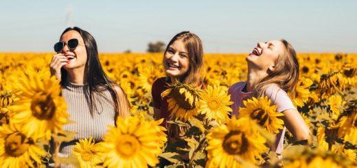Sunflower Happiness Ringtone