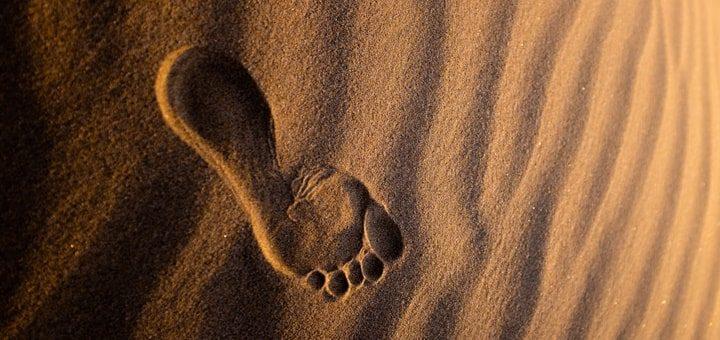 Footprint Ringtone